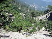 Таракташская»тропа, подъем на Ай-Петри